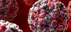 عفونت نوروویروس