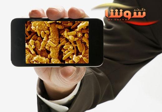میکروبهای روی گوشی همراه شخصیت شما را لو می دهند
