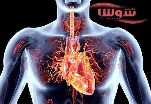 آلودگی هوا قلب شما را سمی می کند