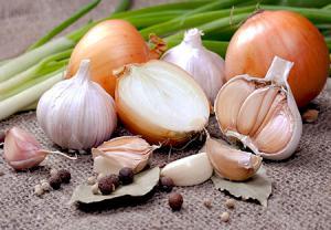 پیاز و سیر از مواد غذایی مفید در درمان زود انزالی