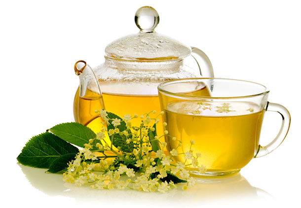 درمان لاغری مفرط با استفاده از داروی گیاهی قاصدک