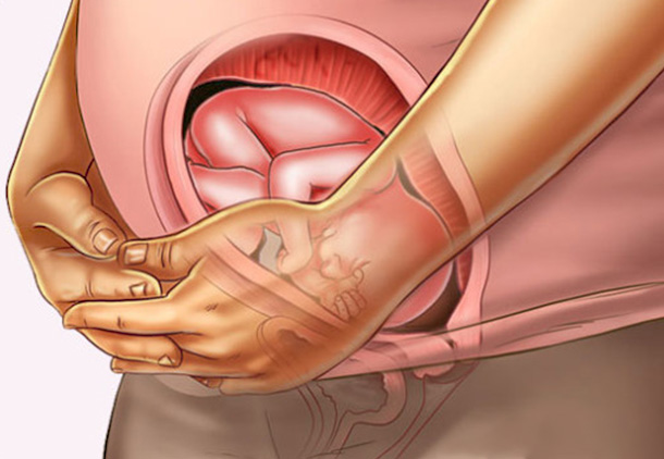 علائم و نشانههای بارداری هفته بیست و دوم بارداری