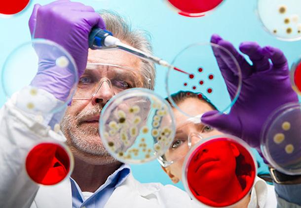 درمان آرتروز مفاصل و گردن با کشت سلولهای غضروف خود فرد