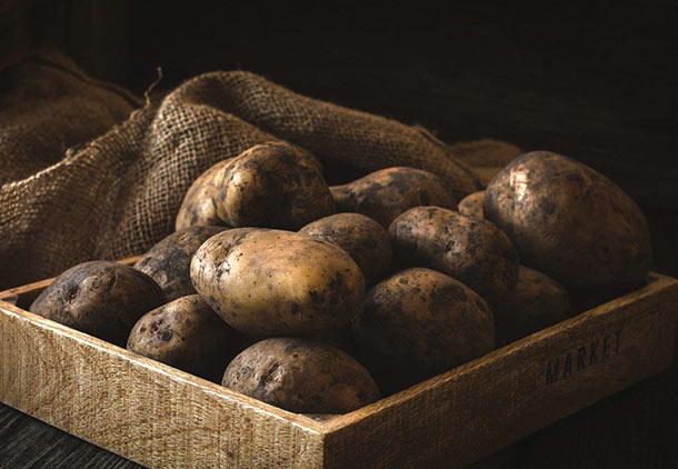 روش خانگی درمان زگیل تناسلی مردان با سیب زمینی