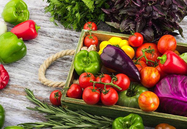 رژیم غذایی زنان زیبا اندام سبک زندگی آنهاست!