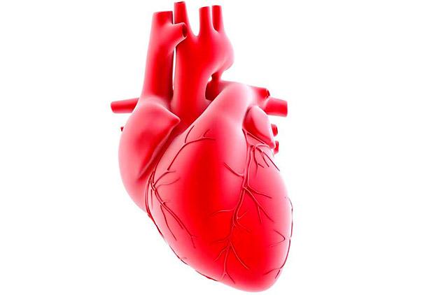 سلامت سیستم قلبی عروقی