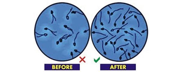 تقویت اسپرم مردان : برای زیاد شدن اسپرم چه بخوریم